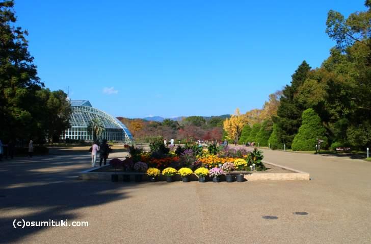 かなり広い植物園です(京都府立植物園)