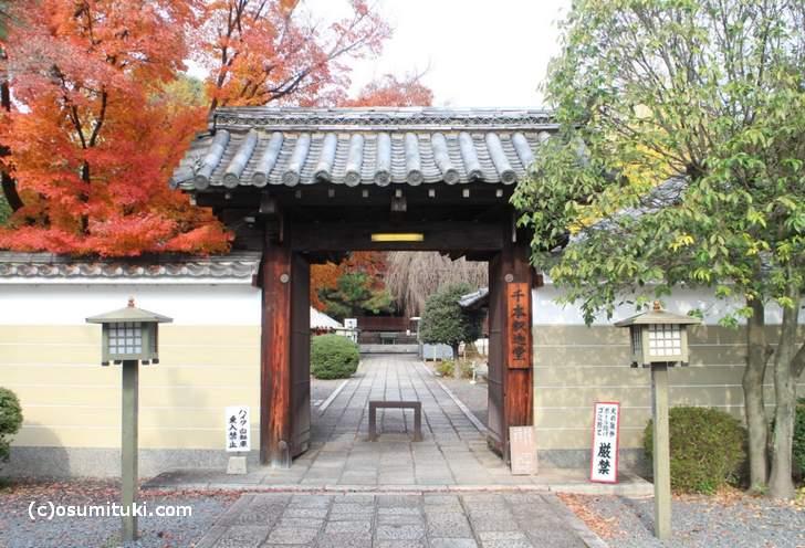 桜も紅葉も楽しめる「千本釈迦堂(大報恩寺)」