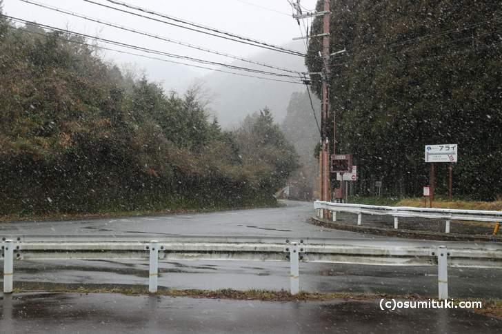 雲ケ畑(くもがはた)への入口、気温は2℃で雪が降っていますが、この先はもっと吹雪です