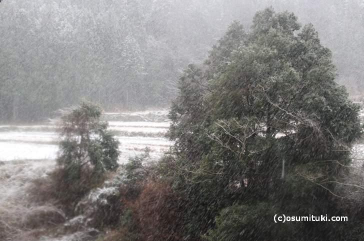 京都で初雪が降った日に撮影した雲ケ畑(2016年12月16日撮影)