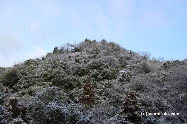 そろそろ真冬の京都ですが、京都市内は北ほど標高が高いので温度も違います