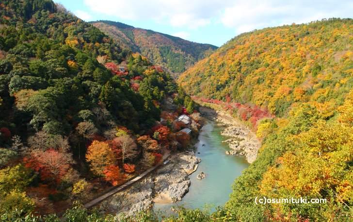 11月24日の京都・嵐山「亀山地区展望台」からの紅葉