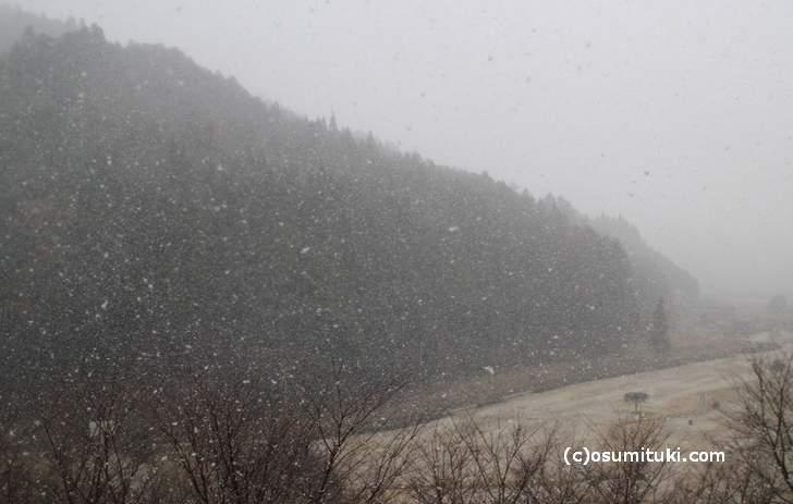 京都府綾部市の山では積もるほど吹雪いていました(2017年12月13日14時頃)