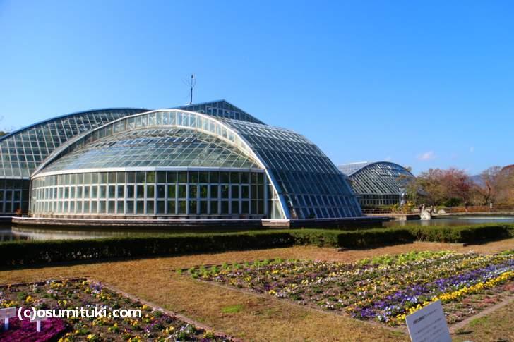 京都府立植物園の正門近くにある世界一高い抹茶ジェラートがテレビで紹介