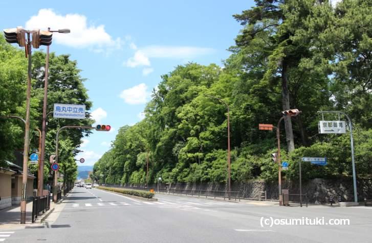 京都の観光名所のひとつ「京都御所」には若い方がよく行くスポットがあります