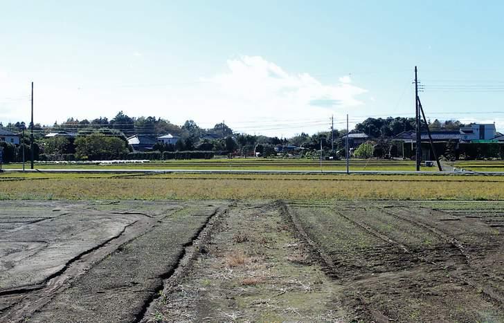 耕作放棄地を使って新しいビジネスを創造していく必要があります