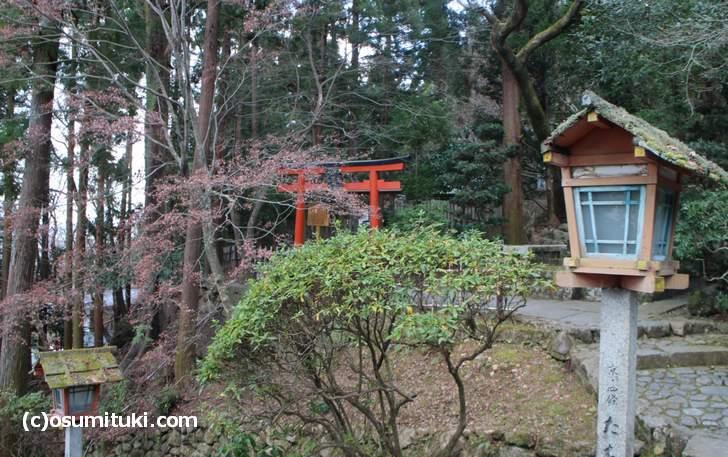 電電宮は、虚空蔵法輪寺にある小さい神社です
