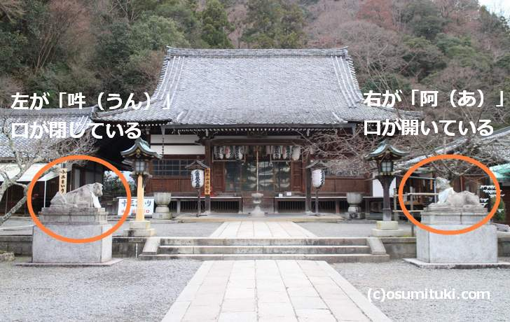 狛犬は右が「阿(あ)」、左が「吽(うん)」