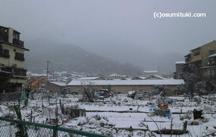 原谷は吹雪いていました
