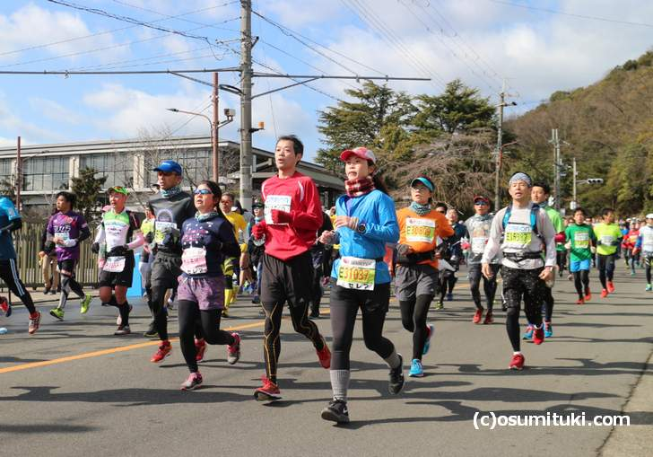 日本人も外国人も、コスプレイヤーも走るイベントです