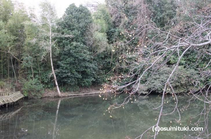 こちらが「南郷池」ですが北にある「南郷公園」付近が表紙です