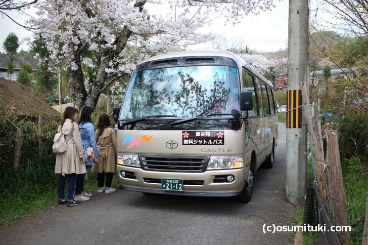 原谷苑シャトルバス(2018年4月1日撮影)