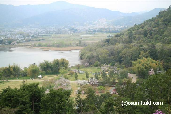 平安郷の敷地に咲く桜と広沢池を一望できる「東山」