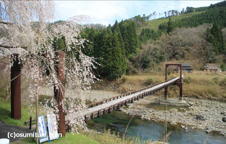 吊橋の先にある2軒の個人宅は『京都人の密かな愉しみ』のロケ地(2018年4月5日撮影)