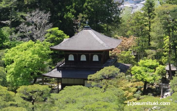 『ブラタモリ銀閣寺編』のテーマは「美しきニッポンの始まりは東山にあり」