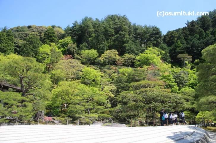 銀閣寺には造園技法「借景(しゃっけい)」を用いた庭園があります