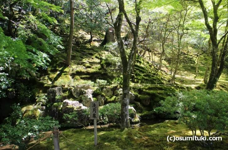 洗月泉の後ろも地形を利用した庭園です