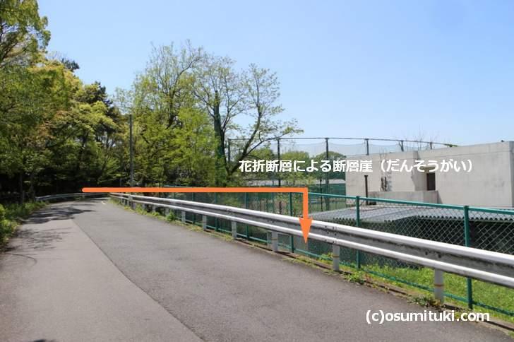 京都大学グラウンドにある断層崖