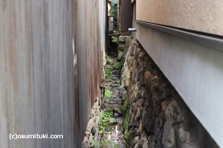 京都の東山は「高低差だらけ」の場所で、住宅の境界にも崖があります