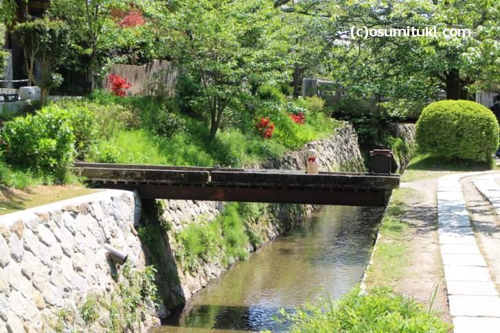琵琶湖疏水は南から北へ高い方へ流れる不思議な川なのです