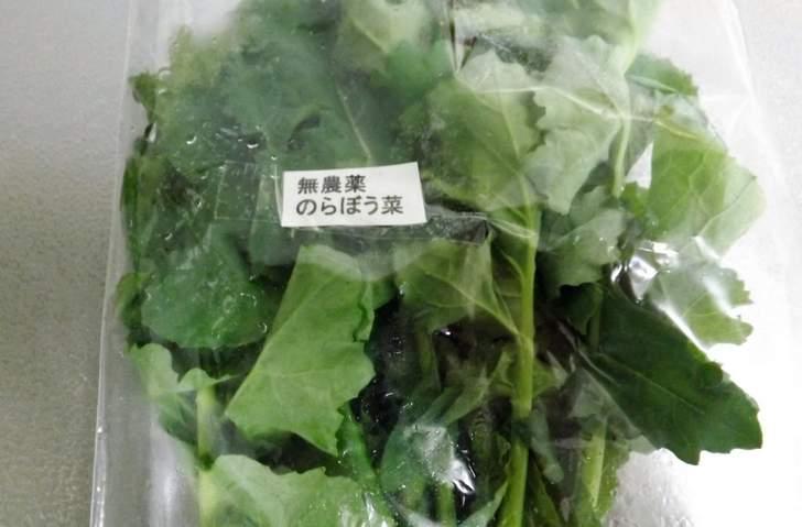 江戸時代から続く伝統野菜 のらぼう菜