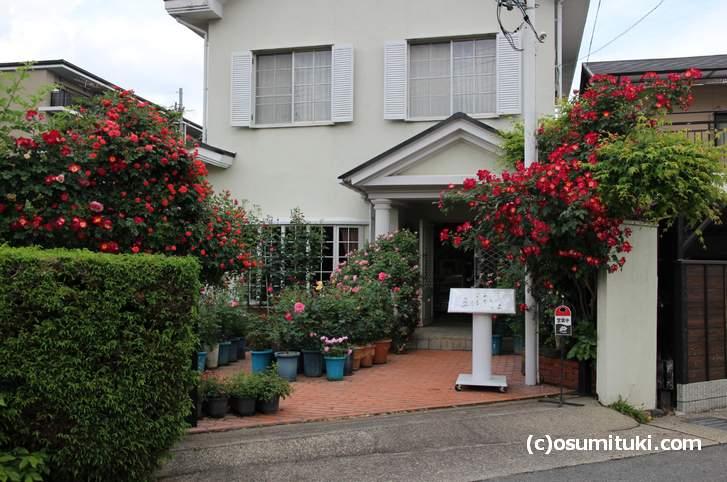 バラの花に囲まれた「ばらCafe ラビアンローズ」