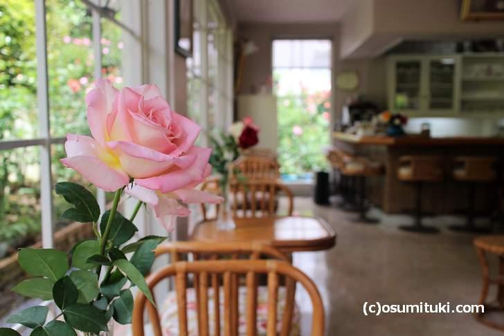 ばらCafe ラビアンローズが2018年5月3日から春営業スタートしています