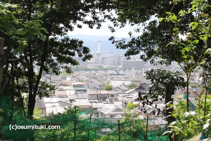 京都タワーを一望できる「花と果樹の東山ガーデン」