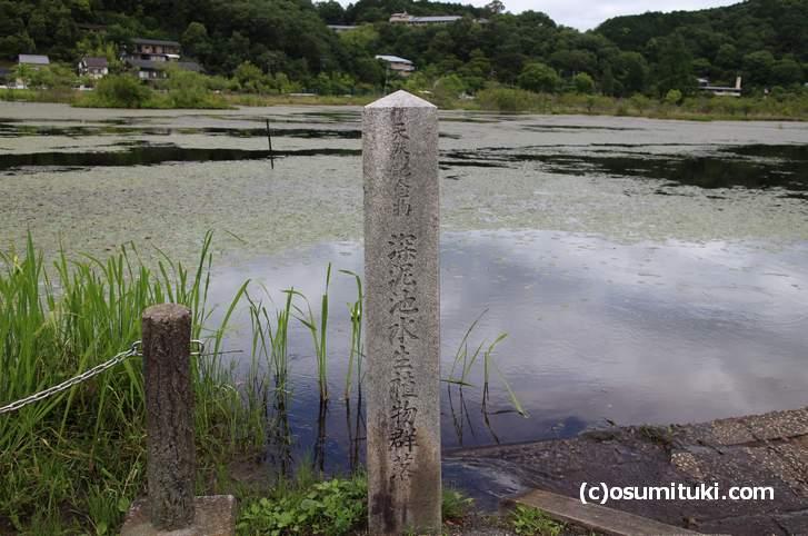 「深泥池水生植物群落」と書かれた昭和2年の石碑
