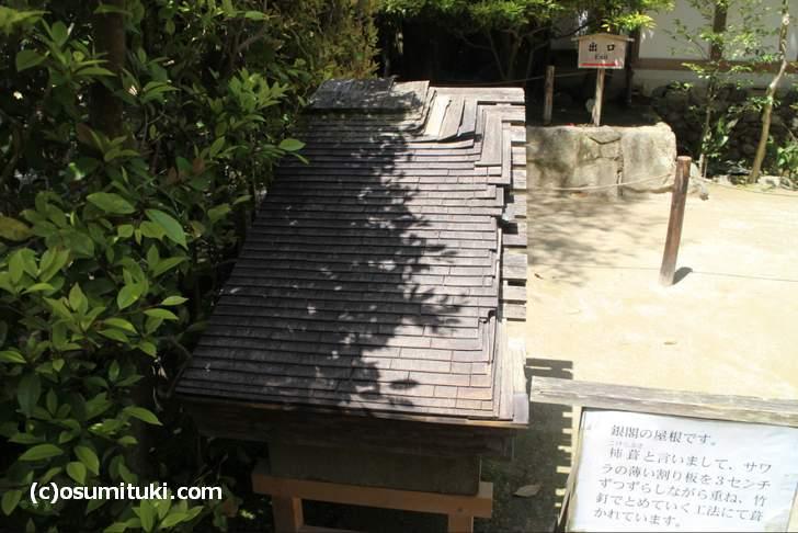 これが銀閣の屋根にいるサワラの正体です