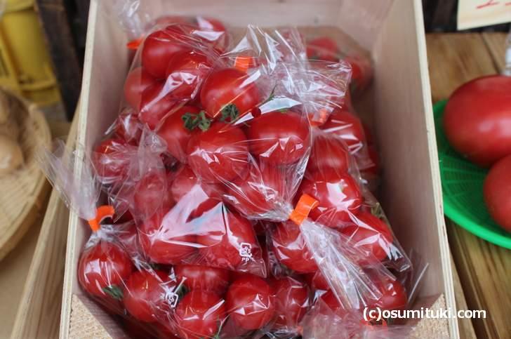 八百屋さんで売られているミニトマト