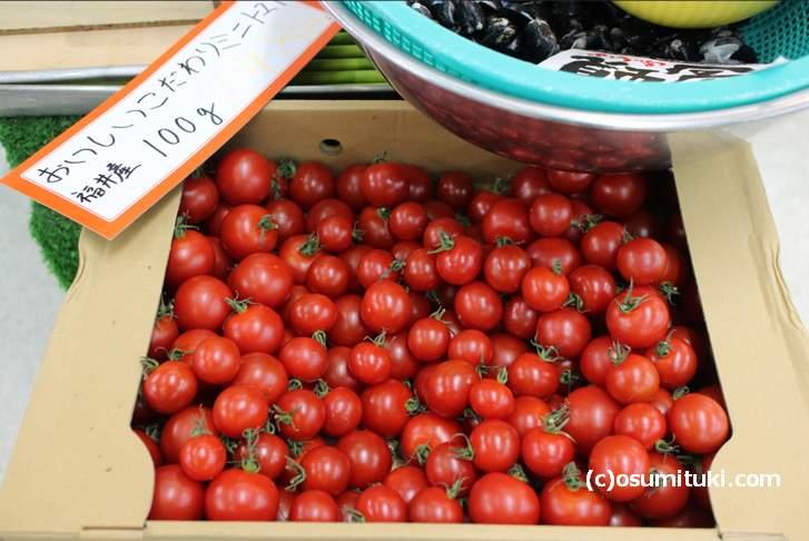 小さいトマトは「ミニトマト」という呼び方が日本では一般的です