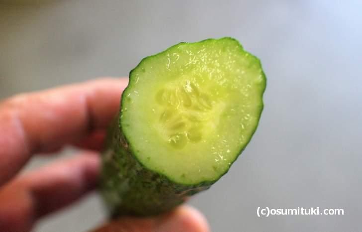 四葉きゅうり どんな味がするのでしょうか