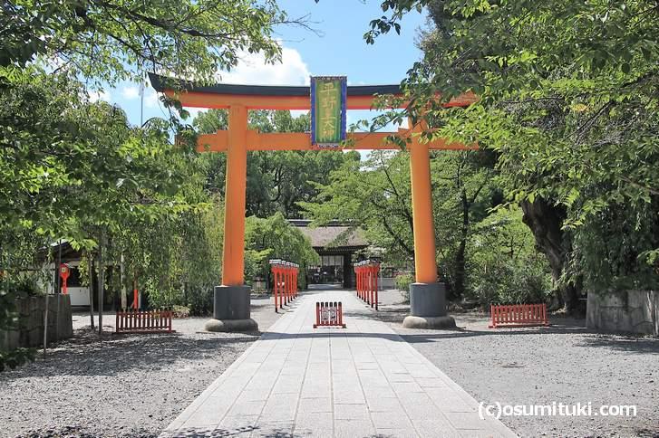 あまりの暑さに人がいない平野神社(京都市北区)
