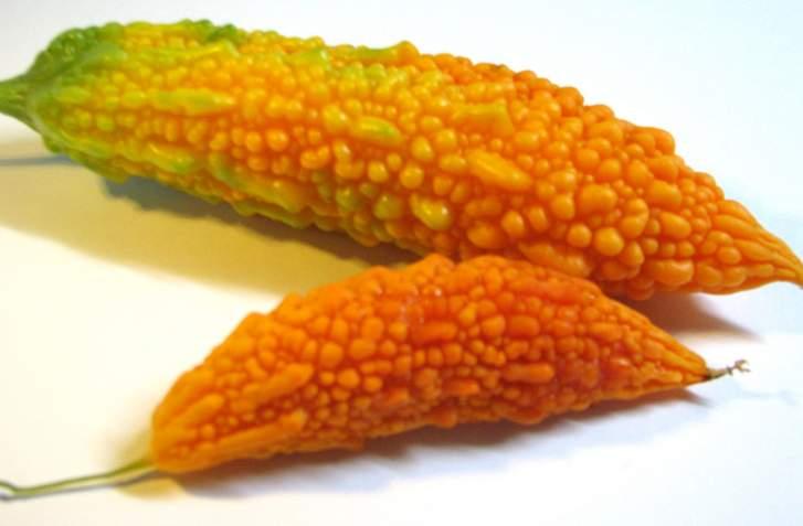 完熟させたゴーヤ、苦いゴーヤが甘く高級フルーツのような味わいに変化します