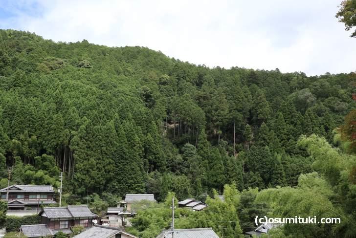 二ノ瀬駅すぐ東にある「安養寺山」に幻の五山送り火「い」があった?