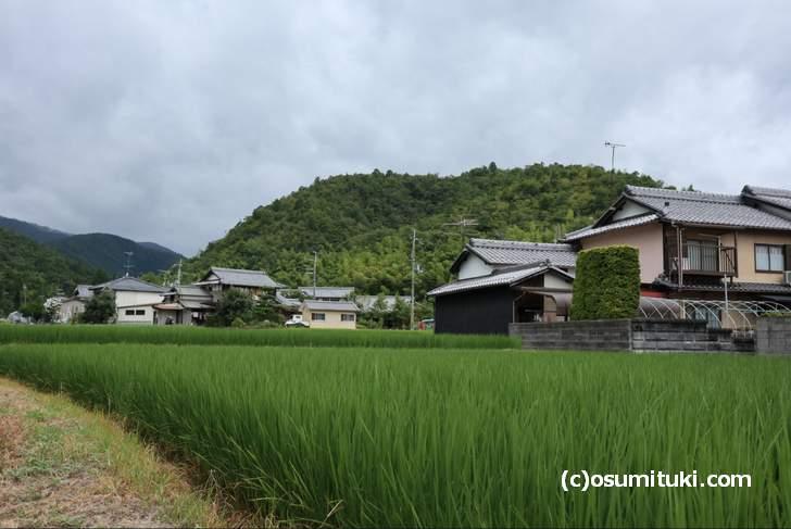 北嵯峨の風景、長閑な田園が広がるところです