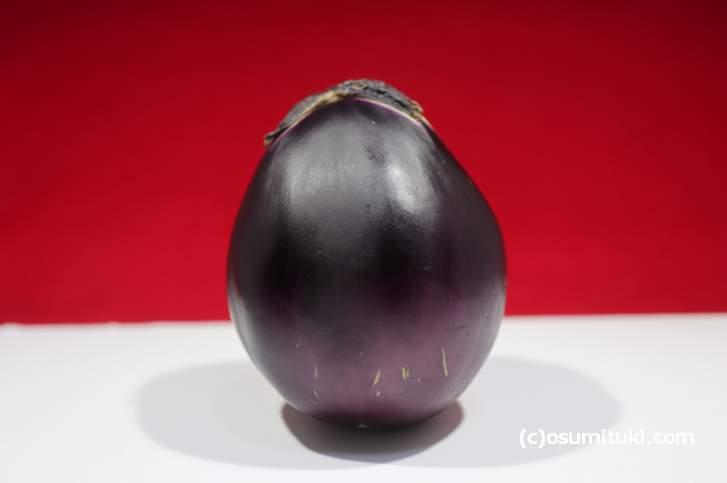 これが大阪・摂津の伝統野菜「鳥飼茄子」の実物!