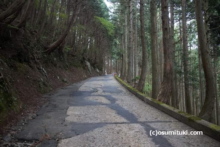 京都の秘境「百井」へ向かう国道477号、対向車が来たらどうすればいいのか分からない道