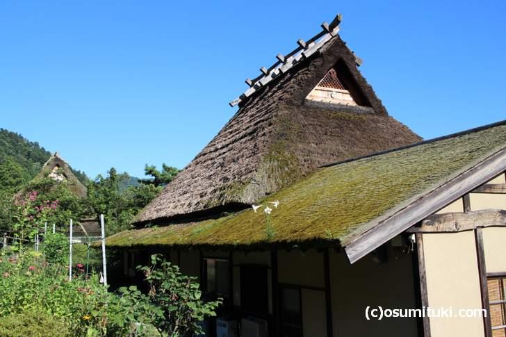 美山で見られる茅葺き(かやぶき)の屋根