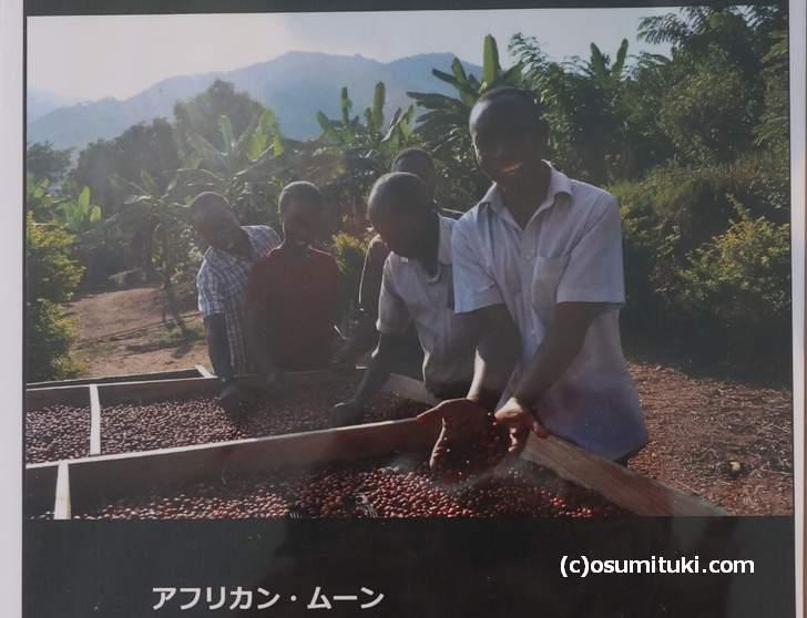 アフリカのバコンゾ族が生産している「アフリカン・ムーン」