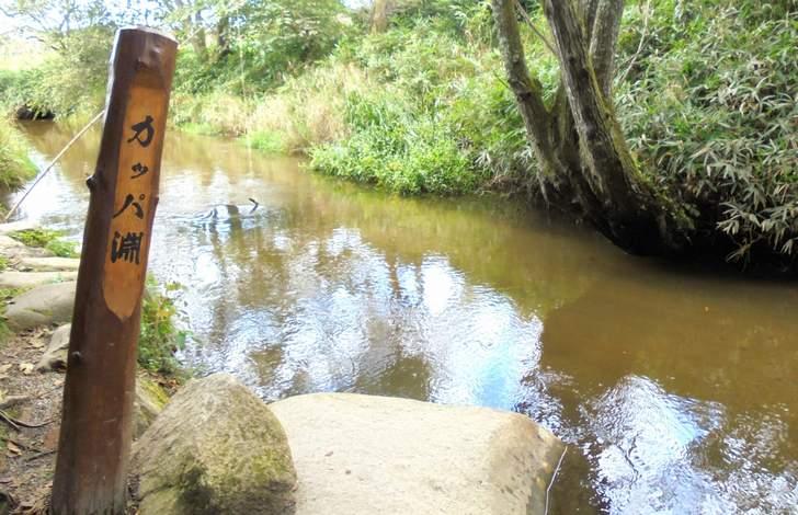 遠野の「カッパ淵」、ここの近くにある農家民宿が「アグリツーリズモ大森家」さん