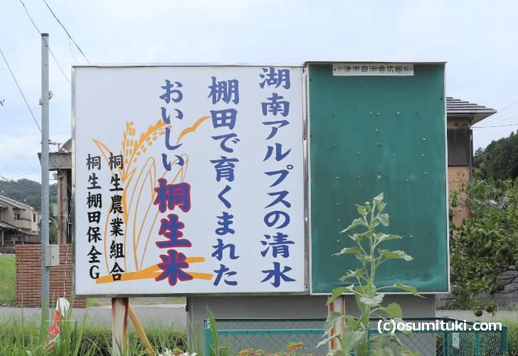 お米は自家製の「桐生米」を使っているそうです