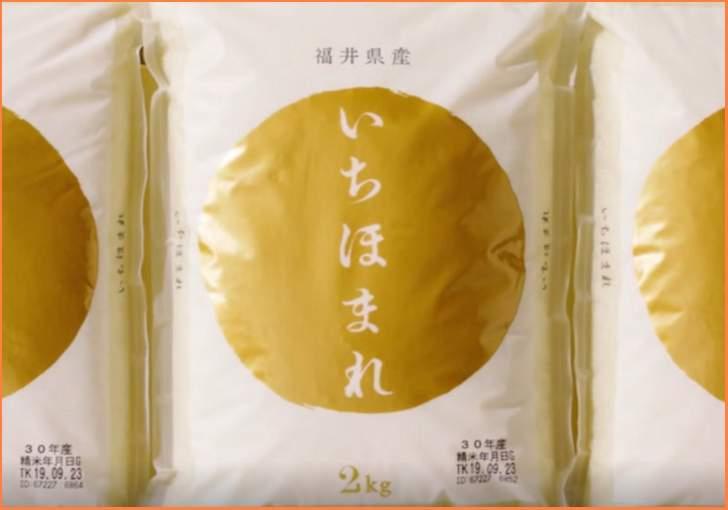 日本の食卓を変える福井の「いちほまれ」