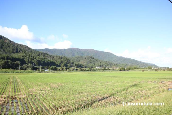 福井県、若狭有田駅近くの田園風景
