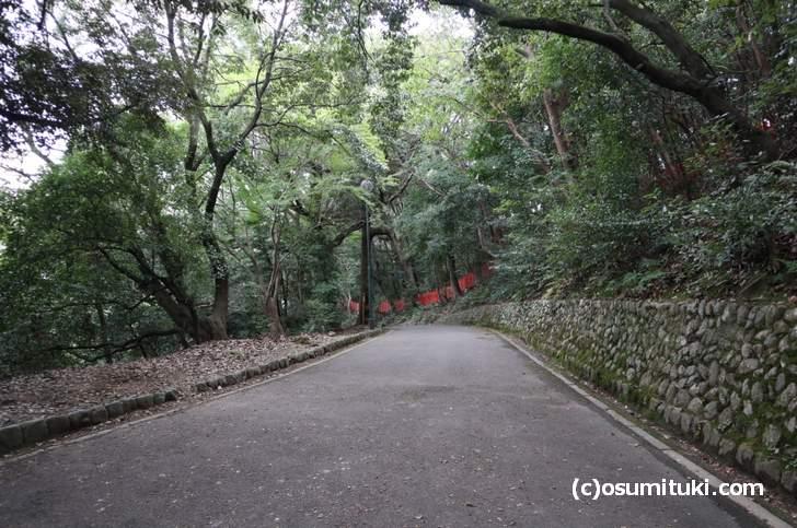 車で山頂まで行けるルート(建勲神社)