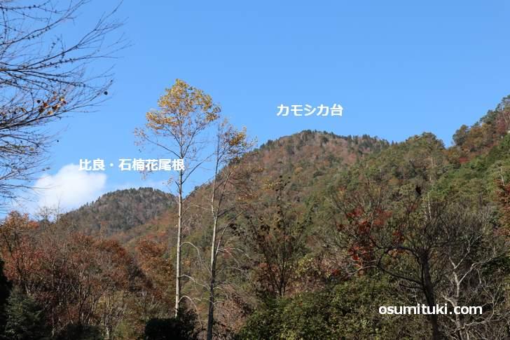 前山があるのは「カモシカ台」と「北比良峠」の間