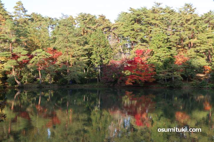 三段池の紅葉(2018年11月10日)