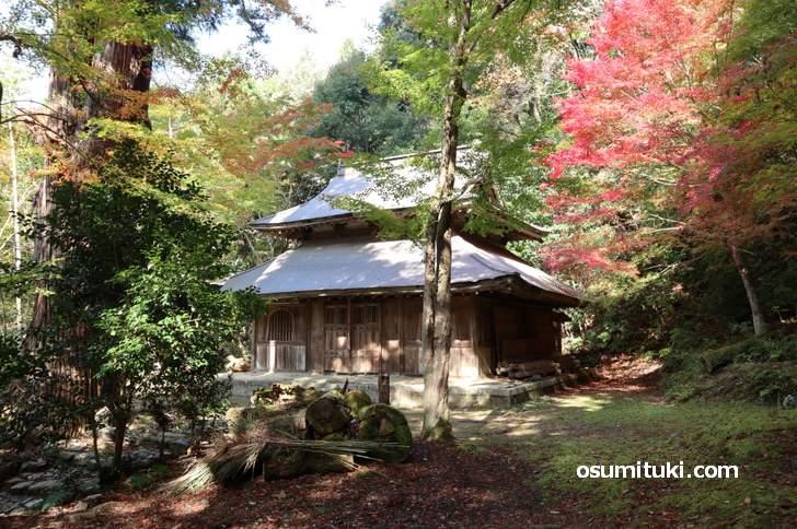 京都・鷹峯「大徳寺讃州寺」の紅葉は見頃でした(2018年11月10日撮影)