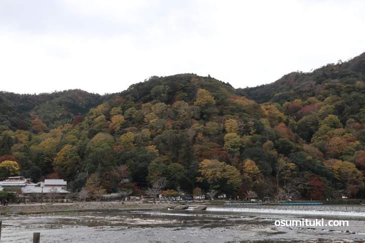 渡月橋から見た「嵐山」の紅葉、まだ紅葉し始めです(2018年11月14日)
